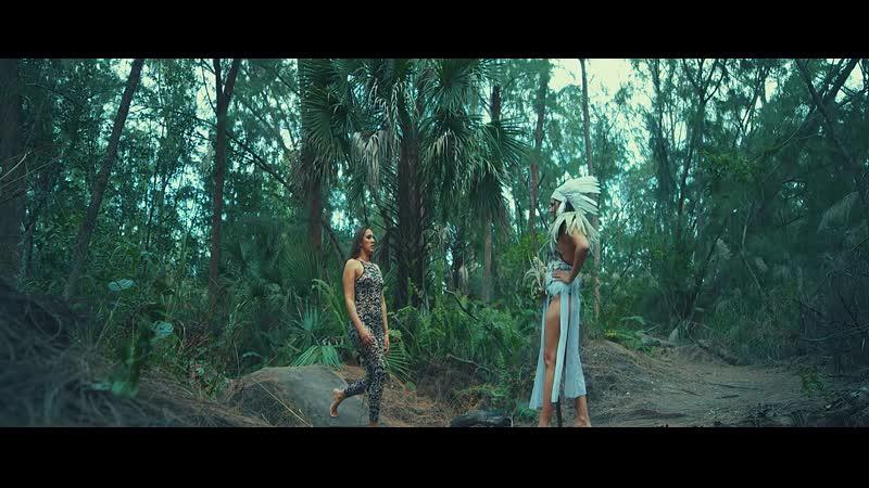 Andy Moor Adina Butar - Wild Dream (2018) HD 1080