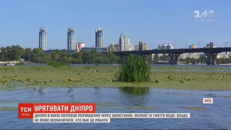 Влада не може визначитися, хто має почистити Дніпро від заростання та гниття води
