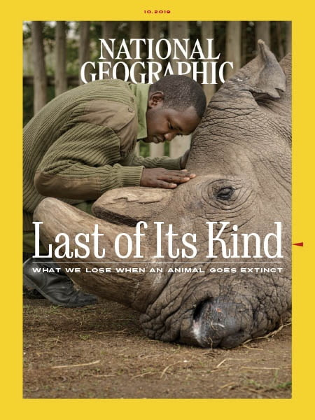National Geographic Interactive - 10.2019