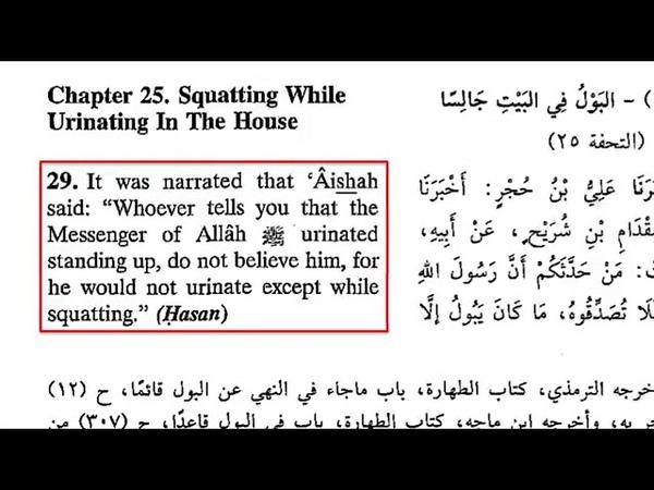 Fun Islamic Facts 1 Muhammad Peed Like a Girl David Wood