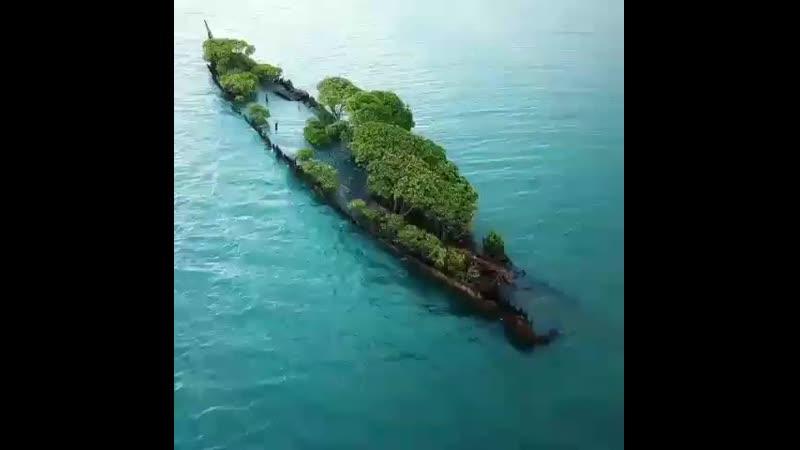Follow @harman gill @worldwide shipping A ship wreck turned island 480 X 480 mp4