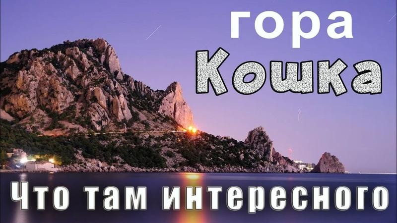 Чем привлекает гора Кошка Чем восхищался Лев Толстой когда посещал Симеиз Отдых в Крыму отзыв