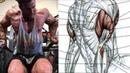 5 Ejercicios para Armar tu Rutina de Triceps, Triceps Workout
