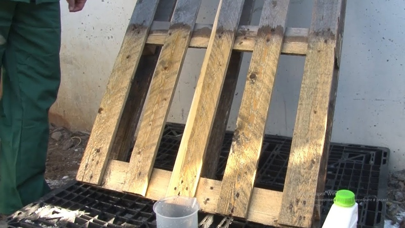 PROSEPT 50 – отбеливатель для древесины