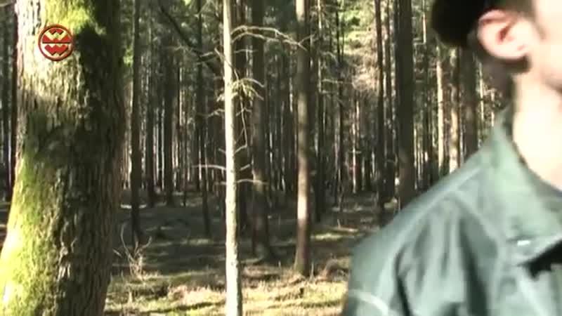 Myteriöses Ungeheuer Bigfoot in Bayern Welt der Wunder