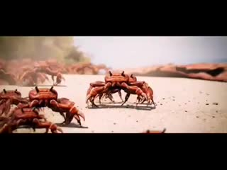 Keith Flint with love в Instagram «Crab Rave We are all warriors The Prodigy Love this Part 2 ◾ Video by @noisestorm  ◾ ◾ ◾ ◾ #k