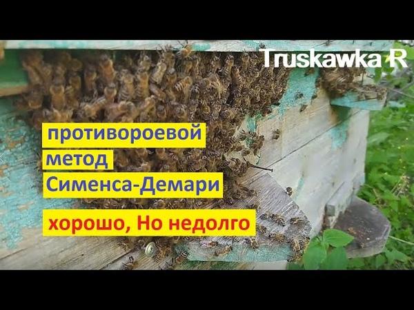 Пчёлы Противороевой метод Демари Тяжело ненадёжно и не надолго Налёт лучше TruskawkaR