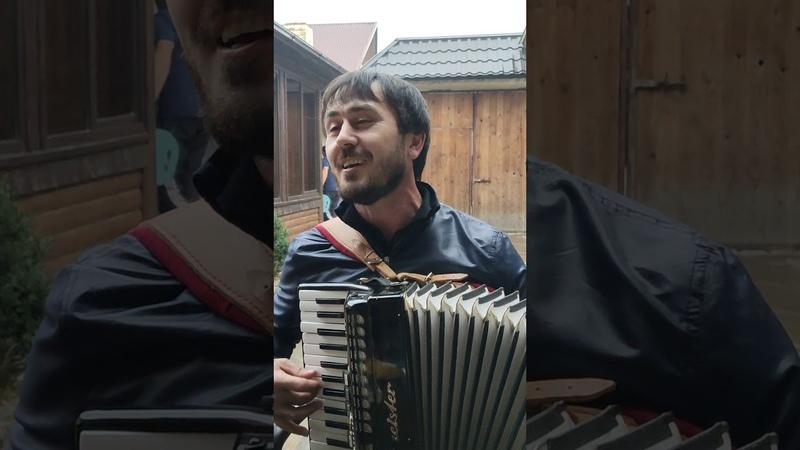 Бомбовая даргинская песня 🎶 2019 года Бажни отдыхают