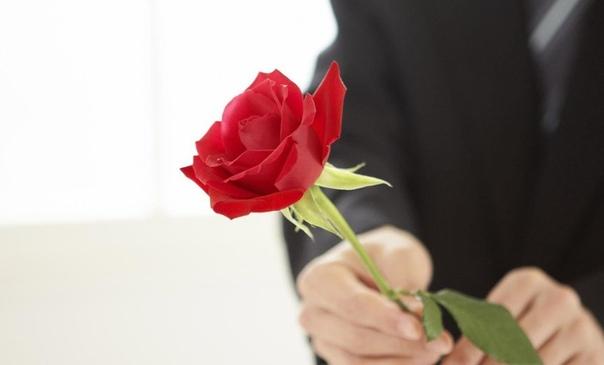 Приметы о королеве цветов розе, к чему розы снятся. Все растения, являющиеся представителями рода Шиповник, обобщенно называют розами. Существующие сорта получены в результате скрещивания
