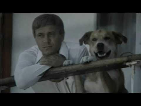 Солёный пёс Ф Ф Кнорре аудиочтение