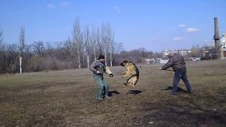 Горловская весна .Дик и Эдик (ну наконец то) .тренинг 1,03,20