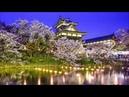 Мышление стратега Искусство бизнеса по японски Омае Кеничи Бизнес Аудиокнига