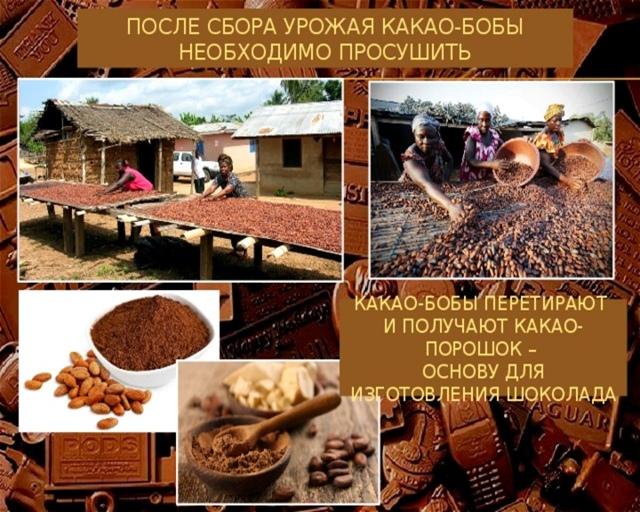 Познавательно- игровой час «Шоколаду каждый рад» (11 июля- Всемирный день шоколада)., изображение №5