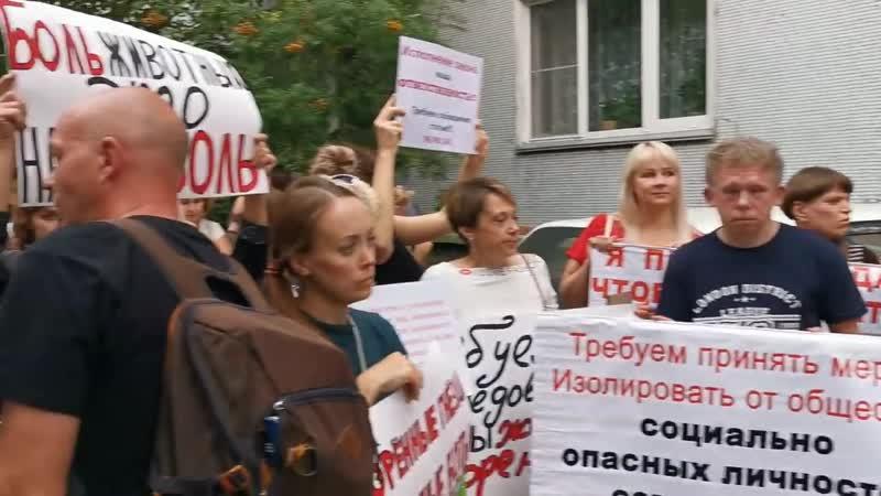 Пикет против девочки жестоко убившей кота Мотю (любительская съемка) Новосибирск