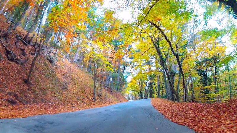 КЛИП 🍁ОСЕННЯЯ 🛣️ ДОРОГА НА 🌄 АЙ ПЕТРИ СО СТОРОНЫ ЯЛТЫ Один из самых красивых маршрутов в Крыму
