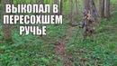 НАХОДКИ В ПЕРЕСОХШЕМ РУЧЬЕ! Поиск золота с металлоискателем / Russian Digger