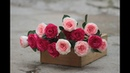 How to make rose paper flowers (tutorial easy) | Cách làm hoa hồng ghép cánh bằng giấy