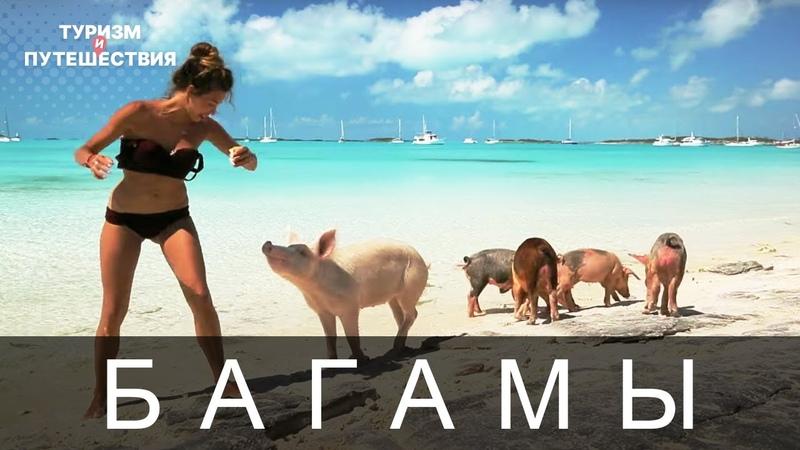 Что посмотреть на райских Багамах Гид от Орел и Решка Райские Багамы