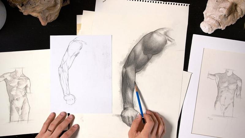 Two Art Nerds Talk About Anatomy - Stephen Bauman Sketch Tour Part 1