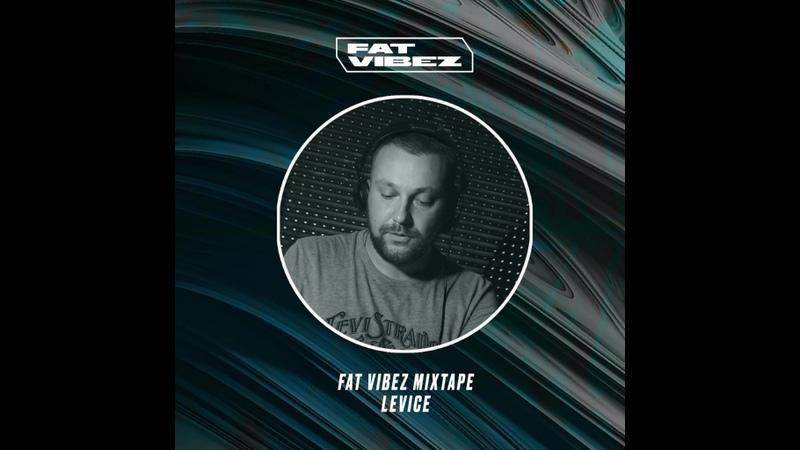 FAT VIBEZ Mixtape Levice