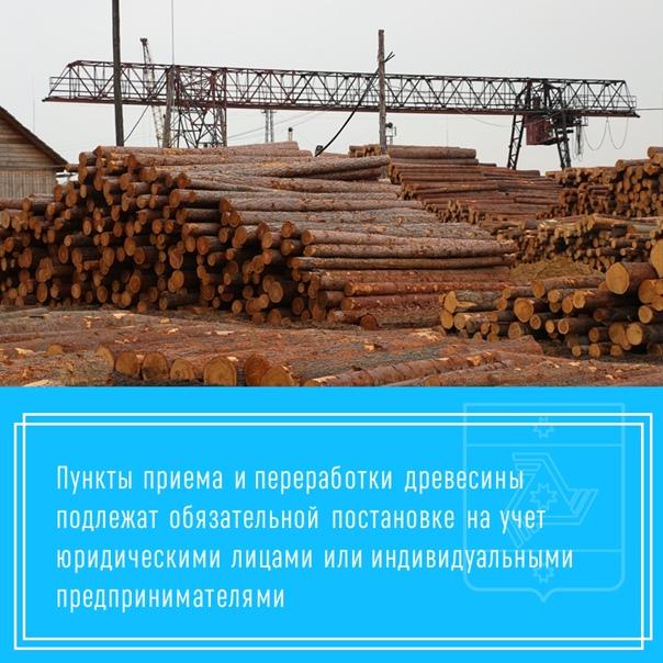 Пункты приема и переработки древесины подлежат обязательной