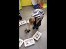 Машинки на основе образовательного конструктора LEGO Mindstorms EV3 и управляются при помощи датчиков.