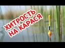 ХИТРЫЕ КАПЛИ на КАРАСЯ 💦 Рыбалка на поплавок в диком заливе.