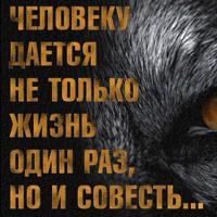 Ахмедов Вадим