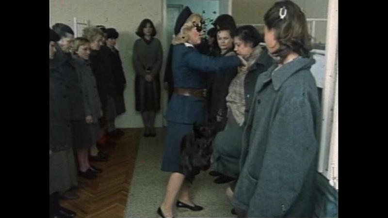 Zene u zatvoru 1985