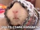 Фотоальбом Алексея Коняхина