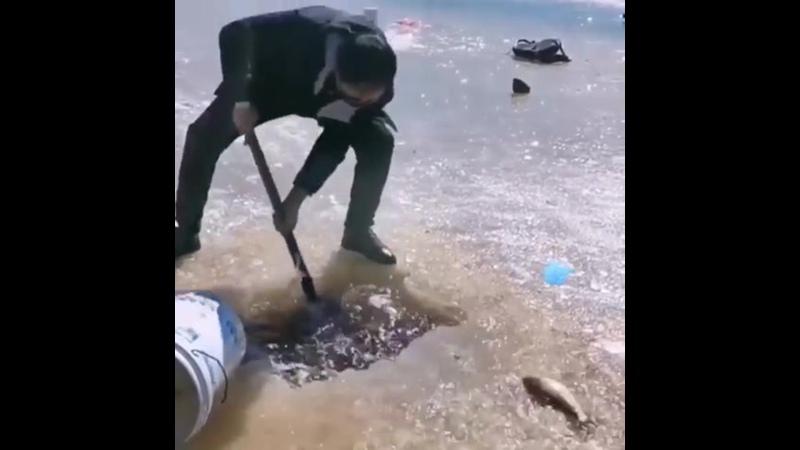 Когда жаждешь улова
