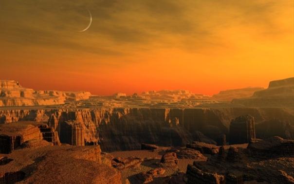 Некоторые грибы могут выжить на Марсе
