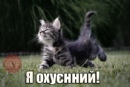 Фотоальбом Александра Шубарева