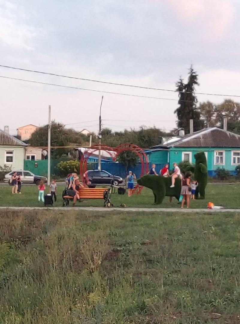 🔥На набережной в Щиграх недавно поставили фигуры медведей. Спустя несколько дней...