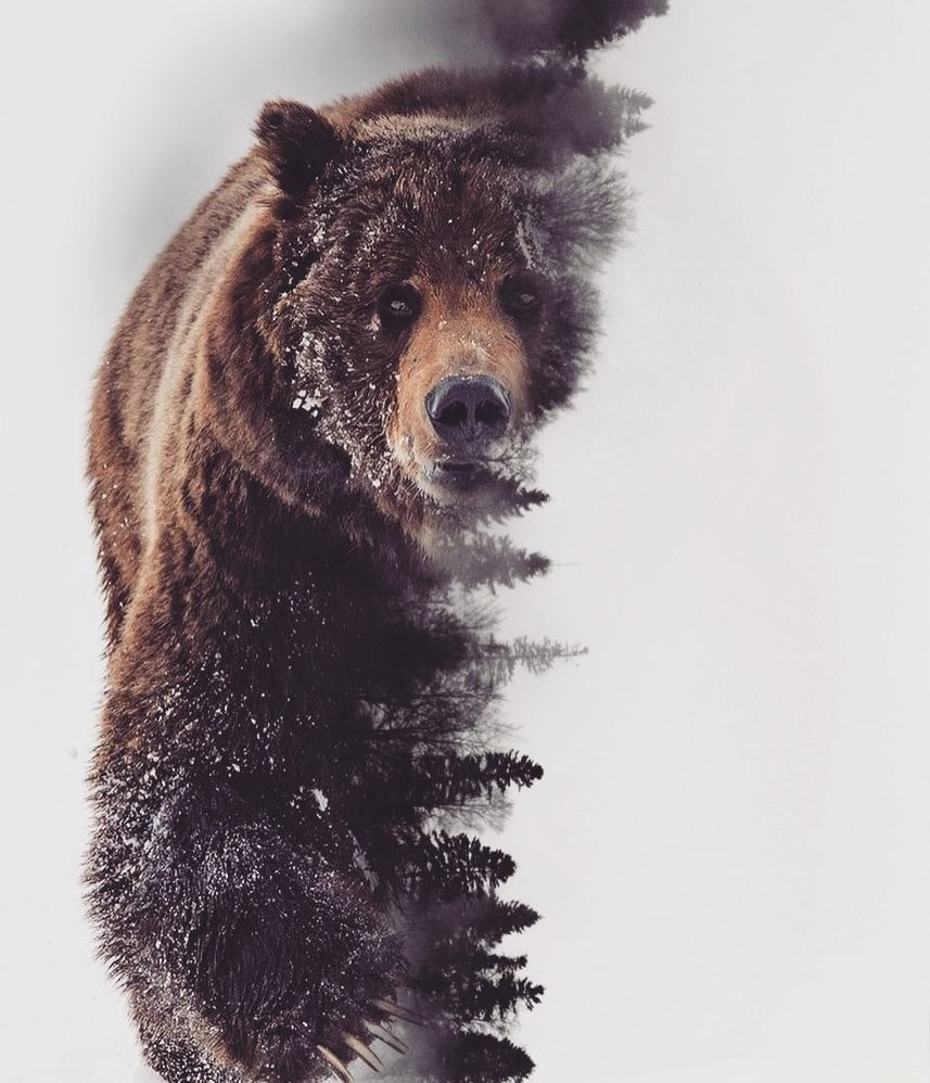 Антон, 26, Ural'sk