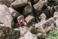 Фотосессия Love Story в Алупке. 06.20