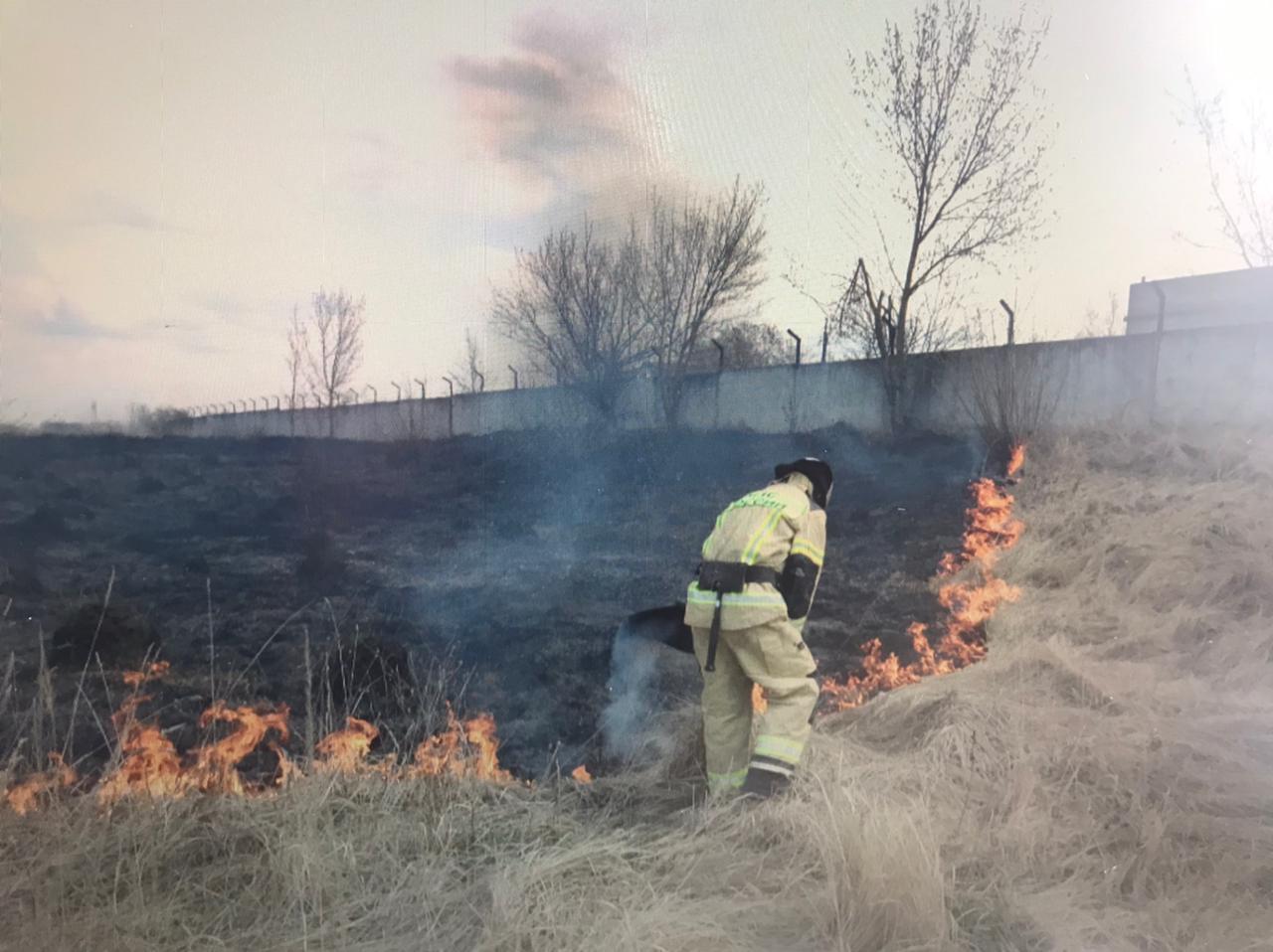 За сутки в Курской области произошло 8 возгораний сухостоя