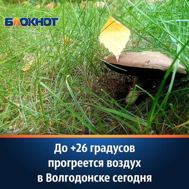 По прогнозам синоптиков, в среду, 15 сентября, в Волгодон...