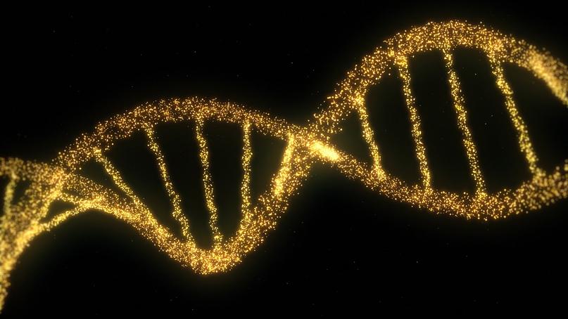 CRISPR ON/OFF, изображение №1