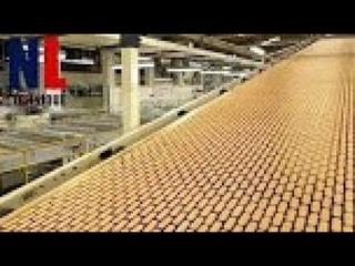 Современная технология обработки пищевых продуктов с использованием автоматики  №7