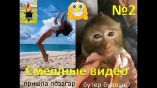Смешное видео   сборник приколов   смех до слез   приколы года   смешные прико-колы №2