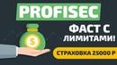 ОБЗОР PROFISEC.SHOP - НОВЫЙ ФАСТ С ЛИМИТАМИ! СТРАХОВКА 25000 РУБ