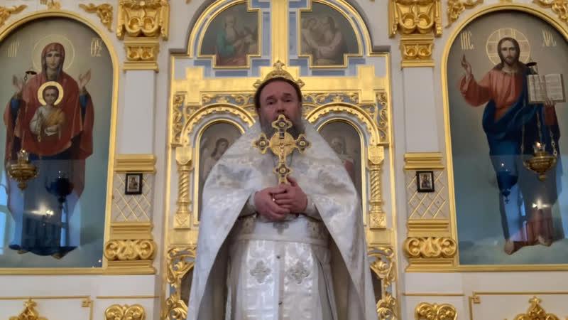 Проповедь настоятеля храма Вознесения Господня г Колпино протоиерея Серафима в праздник Богоявления