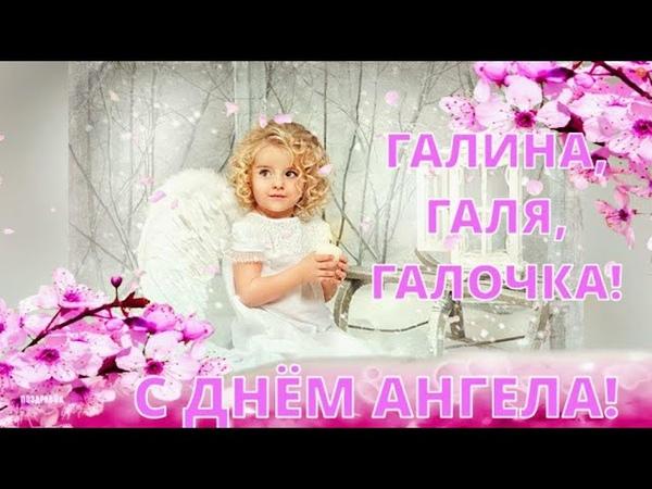 ГАЛИНА Галя Галочка С ДНЕМ АНГЕЛА Красивое поздравление для Галины