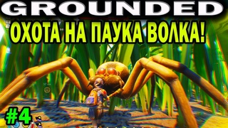 GROUNDED. ОХОТА НА ПАУКА ВОЛКА С ЛОВУШКАМИ! HUNTING A WOLF SPIDER. SPIDER BATTLE
