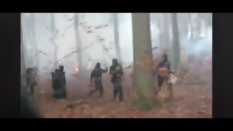 Столкновения между полицией и активистами в Данненродском лесу Dannenröder Forst в Германии