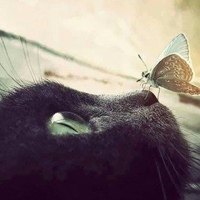 Фотография Александра Акилова ВКонтакте