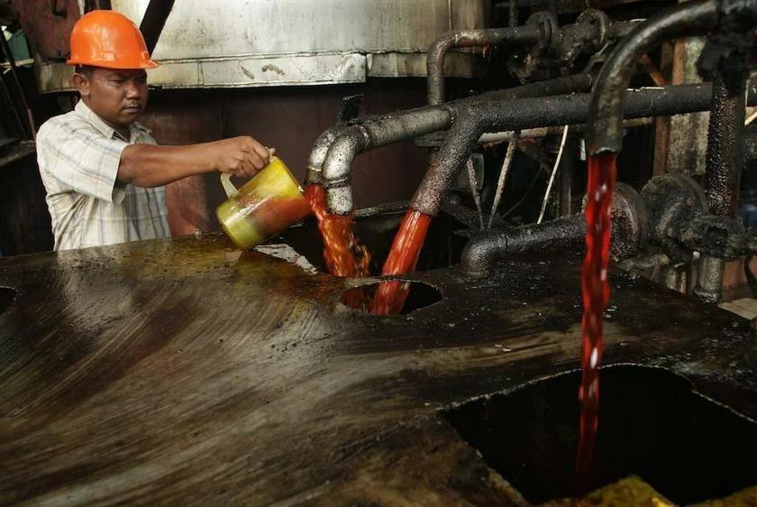 В мире вырос спрос на пальмовое масло, а в России цены на молочку