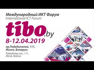 Tibo 2019