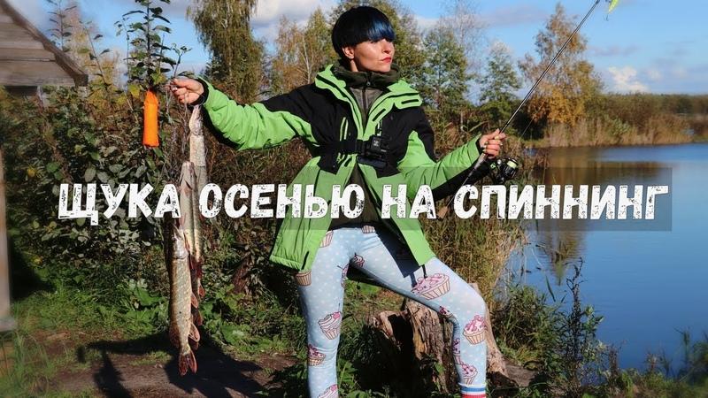 НАКОСИЛА! ЛОВЛЯ ГОЛОДНОЙ ЩУКИ В ЛУЖЕ. Рыбалка на спиннинг 132